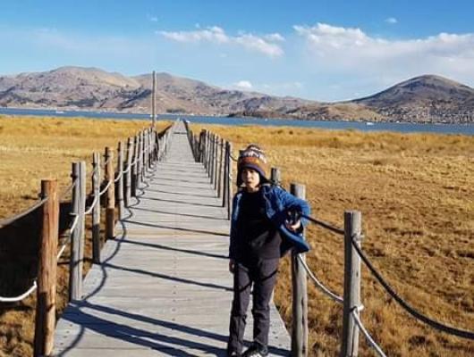 Shou Sugita - Peru